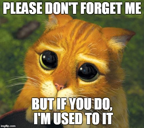 PLEASE DON'T FORGET ME BUT IF YOU DO, I'M USED TO IT | image tagged in cat hat don't forget me | made w/ Imgflip meme maker