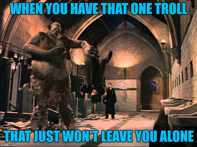 At least I know that trolling me is more important to them than living their life! | WHEN YOU HAVE THAT ONE TROLL THAT JUST WON'T LEAVE YOU ALONE | image tagged in trolls,memes,harry potter,funny,trolls have no life,jealousy | made w/ Imgflip meme maker
