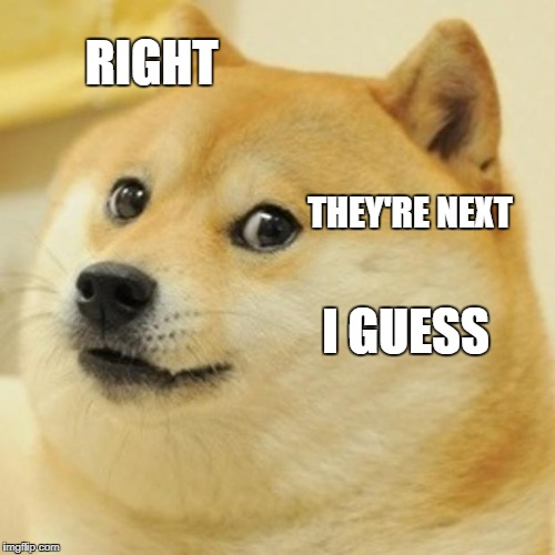 Doge Meme | RIGHT THEY'RE NEXT I GUESS | image tagged in memes,doge | made w/ Imgflip meme maker
