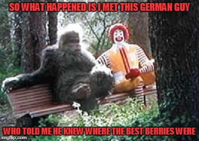 SO WHAT HAPPENED IS I MET THIS GERMAN GUY WHO TOLD ME HE KNEW WHERE THE BEST BERRIES WERE | made w/ Imgflip meme maker