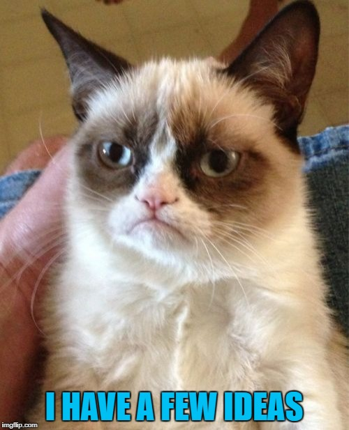 Grumpy Cat Meme | I HAVE A FEW IDEAS | image tagged in memes,grumpy cat | made w/ Imgflip meme maker