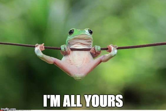 Frog Position | I'M ALL YOURS | image tagged in memes,frog | made w/ Imgflip meme maker