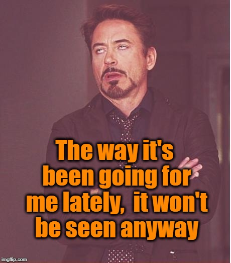 Face You Make Robert Downey Jr Meme | The way it's been going for me lately,  it won't be seen anyway | image tagged in memes,face you make robert downey jr | made w/ Imgflip meme maker