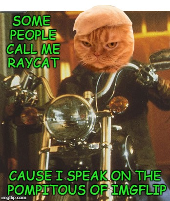 Midnight Memer | SOME PEOPLE CALL ME RAYCAT CAUSE I SPEAK ON THE POMPITOUS OF IMGFLIP | image tagged in memes,raycat,pompitous,imgflip | made w/ Imgflip meme maker
