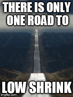 THERE IS ONLY ONE ROAD TO LOW SHRINK | image tagged in highway | made w/ Imgflip meme maker