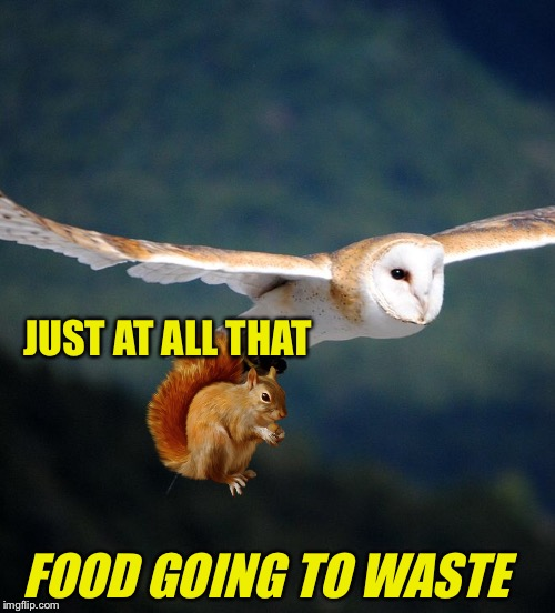 JUST AT ALL THAT FOOD GOING TO WASTE | made w/ Imgflip meme maker