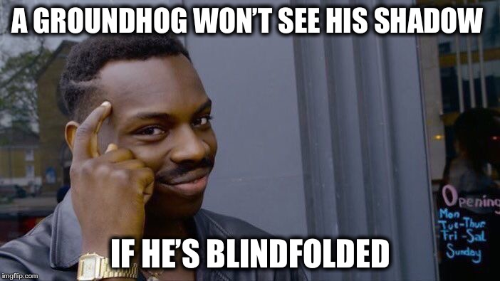 You Can't Fool Mother Nature! | A GROUNDHOG WON'T SEE HIS SHADOW IF HE'S BLINDFOLDED | image tagged in memes,roll safe think about it,groundhog day | made w/ Imgflip meme maker