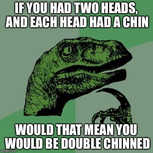 Philosoraptor Meme | IF YOU HAD TWO HEADS, AND EACH HEAD HAD A CHIN WOULD THAT MEAN YOU WOULD BE DOUBLE CHINNED | image tagged in memes,philosoraptor | made w/ Imgflip meme maker