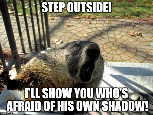 Groundhog not afraid of his shadow | STEP OUTSIDE! I'LL SHOW YOU WHO'S AFRAID OF HIS OWN SHADOW! | image tagged in angry groundhog | made w/ Imgflip meme maker