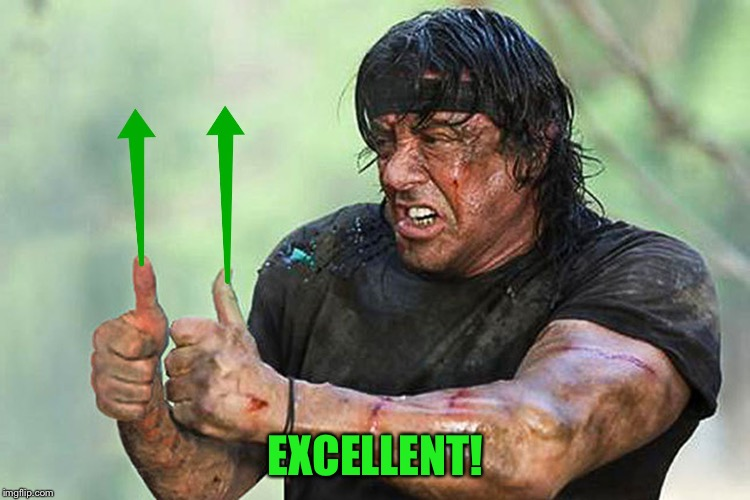 Two Thumbs Up Vote | EXCELLENT! | image tagged in two thumbs up vote | made w/ Imgflip meme maker