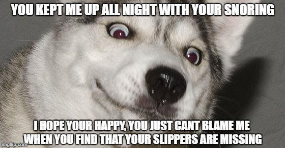 YOU KEPT ME UP ALL NIGHT WITH YOUR SNORING I HOPE YOUR HAPPY, YOU JUST CANT BLAME ME WHEN YOU FIND THAT YOUR SLIPPERS ARE MISSING | image tagged in moon moon | made w/ Imgflip meme maker