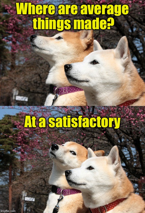 Just Your Average Bad Pun Dogs | Where are average things made? At a satisfactory | image tagged in bad pun dogs,memes,factory,satisfied,made in usa | made w/ Imgflip meme maker