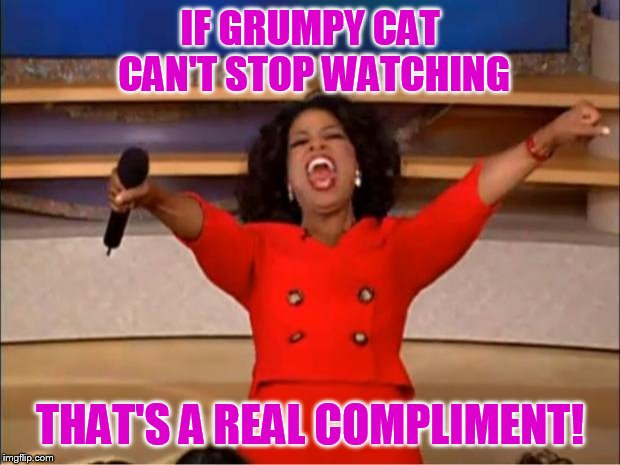 Oprah You Get A Meme | IF GRUMPY CAT CAN'T STOP WATCHING THAT'S A REAL COMPLIMENT! | image tagged in memes,oprah you get a | made w/ Imgflip meme maker