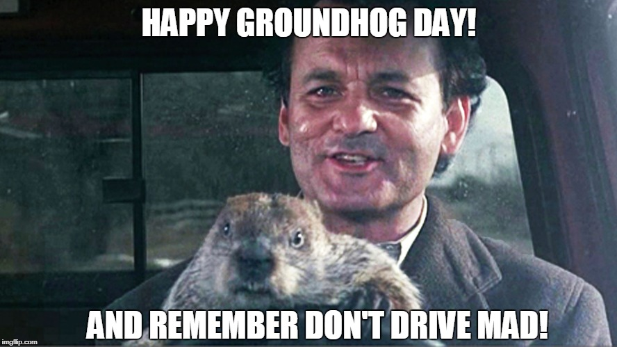 Happy Groundhog Day! | HAPPY GROUNDHOG DAY! AND REMEMBER DON'T DRIVE MAD! | image tagged in groundhog day,phil connor,bill murray,don't drive mad | made w/ Imgflip meme maker