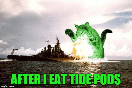 RayCatzilla | AFTER I EAT TIDE PODS | image tagged in raycatzilla | made w/ Imgflip meme maker