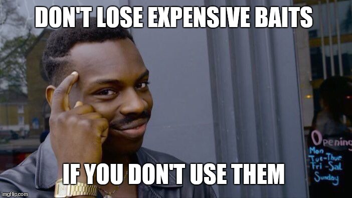 Roll Safe Think About It Meme | DON'T LOSE EXPENSIVE BAITS IF YOU DON'T USE THEM | image tagged in memes,roll safe think about it | made w/ Imgflip meme maker