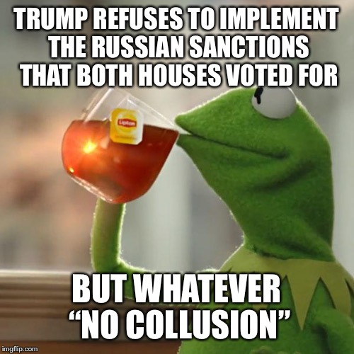 "But Thats None Of My Business Meme | TRUMP REFUSES TO IMPLEMENT THE RUSSIAN SANCTIONS THAT BOTH HOUSES VOTED FOR BUT WHATEVER ""NO COLLUSION"" 