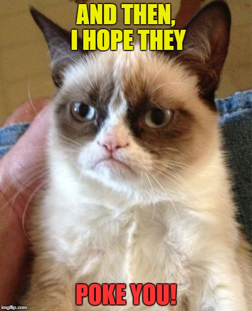 Grumpy Cat Meme | AND THEN, I HOPE THEY POKE YOU! | image tagged in memes,grumpy cat | made w/ Imgflip meme maker