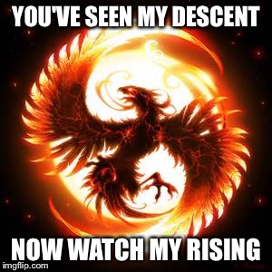 phoenix bird | YOU'VE SEEN MY DESCENT NOW WATCH MY RISING | image tagged in phoenix bird | made w/ Imgflip meme maker