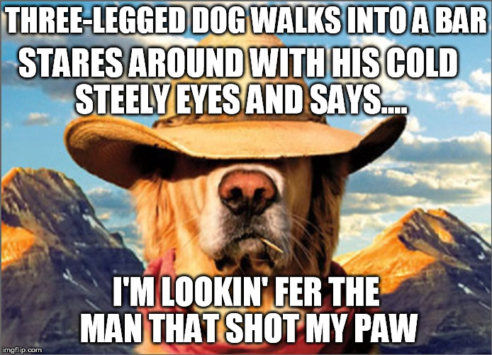 Favorite joke, no apologies if it's ever been done before, because it's so bad it's that good... | THREE-LEGGED DOG WALKS INTO A BAR I'M LOOKIN' FER THE MAN THAT SHOT MY PAW STARES AROUND WITH HIS COLD STEELY EYES AND SAYS.... | image tagged in dog,bad pun,western,joke,humor | made w/ Imgflip meme maker