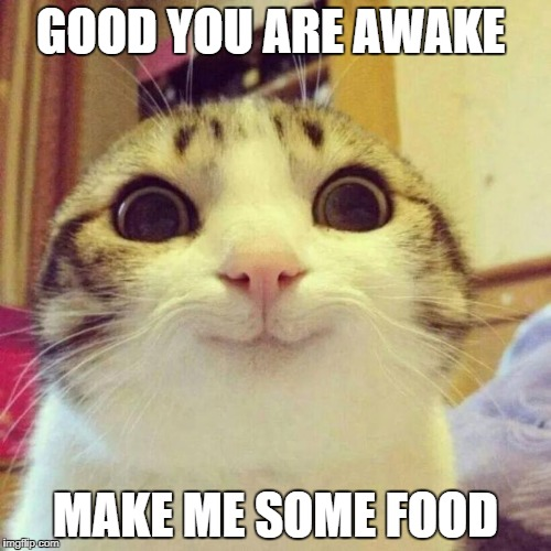 Smiling Cat Meme | GOOD YOU ARE AWAKE MAKE ME SOME FOOD | image tagged in memes,smiling cat | made w/ Imgflip meme maker