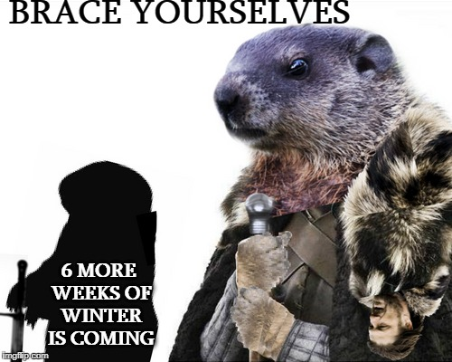 Westroputawney Phil Stark  | BRACE YOURSELVES 6 MORE WEEKS OF WINTER IS COMING | image tagged in groundhog day,groundhog,game of thrones,memes,funny | made w/ Imgflip meme maker