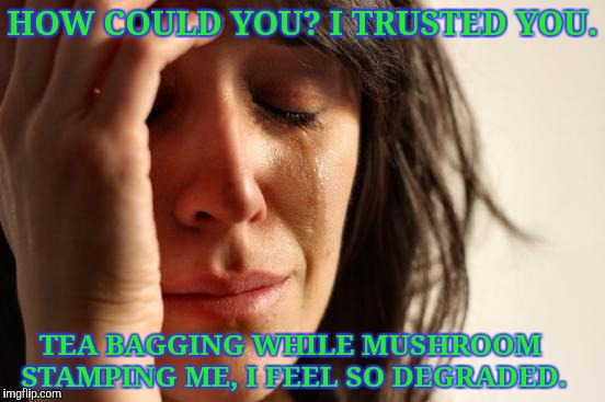 First World Problems Meme | HOW COULD YOU? I TRUSTED YOU. TEA BAGGING WHILE MUSHROOM STAMPING ME, I FEEL SO DEGRADED. | image tagged in memes,first world problems | made w/ Imgflip meme maker