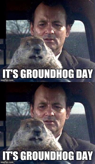 It's groundhog day | image tagged in it's groundhog day again,memes | made w/ Imgflip meme maker