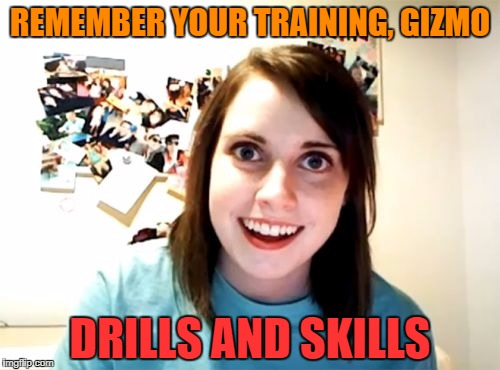 REMEMBER YOUR TRAINING, GIZMO DRILLS AND SKILLS | made w/ Imgflip meme maker