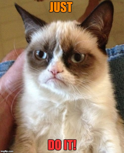Grumpy Cat Meme | JUST DO IT! | image tagged in memes,grumpy cat | made w/ Imgflip meme maker