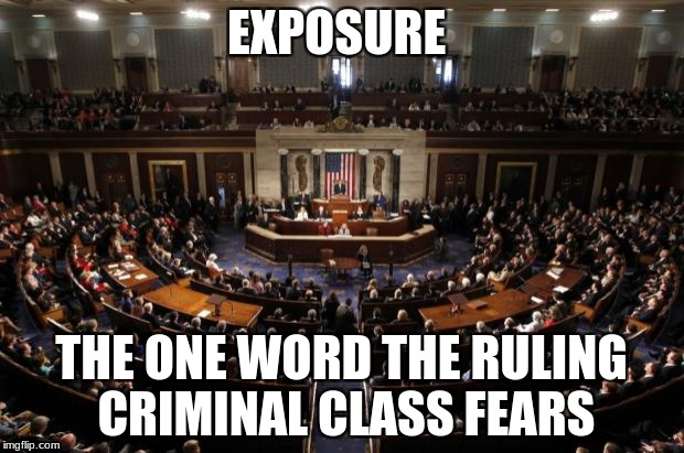 congress | EXPOSURE THE ONE WORD THE RULING CRIMINAL CLASS FEARS | image tagged in congress | made w/ Imgflip meme maker