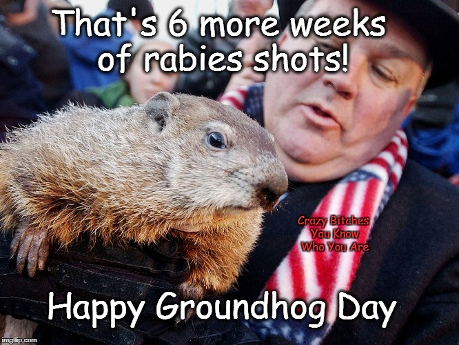 That's 6 more weeks of rabies shots! Crazy B**ches You Know Who You Are Happy Groundhog Day | image tagged in groundhog day | made w/ Imgflip meme maker