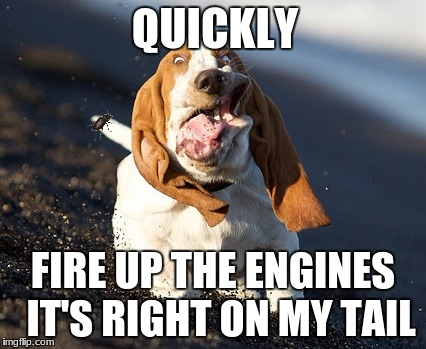 Fire up the engines! | QUICKLY FIRE UP THE ENGINES IT'S RIGHT ON MY TAIL | image tagged in crazy dog | made w/ Imgflip meme maker