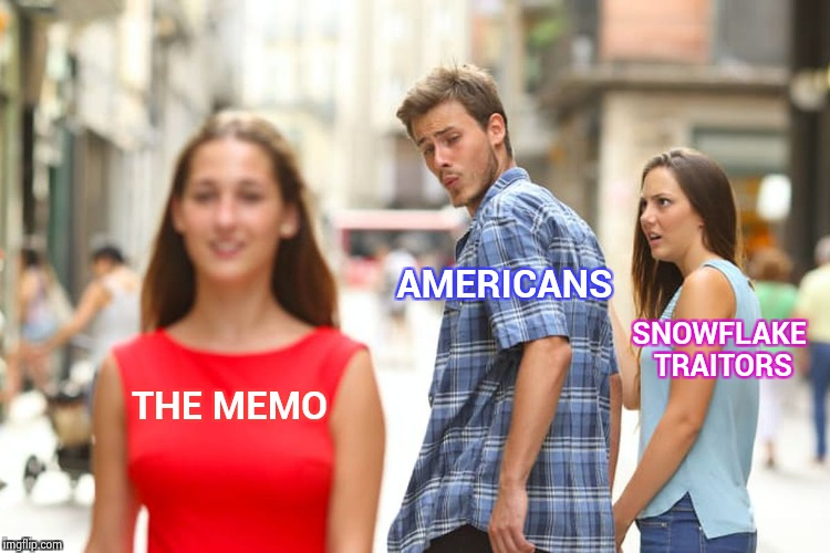 The fit is about to hit the shan | THE MEMO AMERICANS SNOWFLAKE TRAITORS | image tagged in memes,distracted boyfriend,releasethememo,libtards,traitors | made w/ Imgflip meme maker