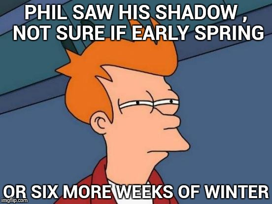 """You woke me up for this ?"" - Punxsutawney Phil 