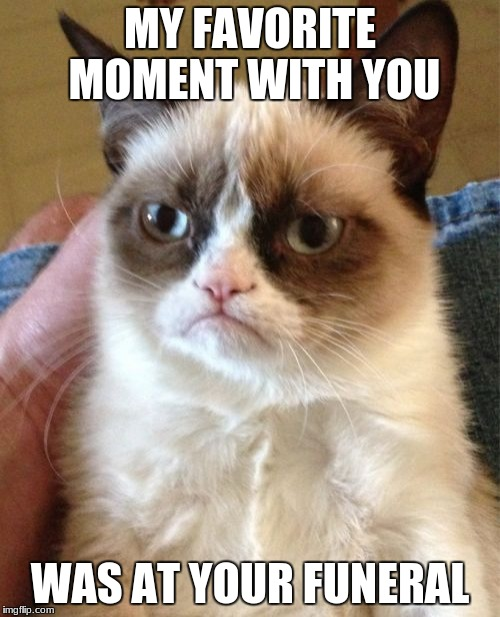 Grumpy Cat Meme | MY FAVORITE MOMENT WITH YOU WAS AT YOUR FUNERAL | image tagged in memes,grumpy cat,funeral | made w/ Imgflip meme maker