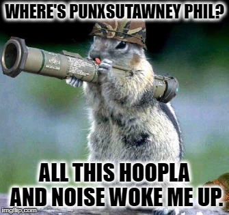 Bazooka Squirrel | WHERE'S PUNXSUTAWNEY PHIL? ALL THIS HOOPLA AND NOISE WOKE ME UP. | image tagged in memes,bazooka squirrel | made w/ Imgflip meme maker
