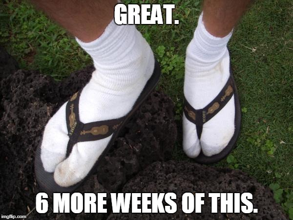 Florida cold weather gear  | GREAT. 6 MORE WEEKS OF THIS. | image tagged in florida cold weather gear | made w/ Imgflip meme maker
