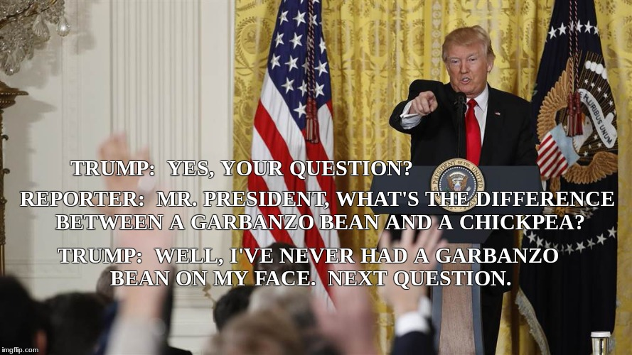 next question? | TRUMP:  YES, YOUR QUESTION? TRUMP:  WELL, I'VE NEVER HAD A GARBANZO BEAN ON MY FACE.  NEXT QUESTION. REPORTER:  MR. PRESIDENT, WHAT'S THE DI | image tagged in memes | made w/ Imgflip meme maker