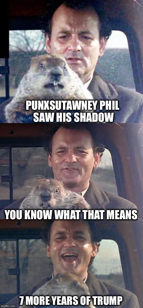 Ground Hog Day | PUNXSUTAWNEY PHIL SAW HIS SHADOW 7 MORE YEARS OF TRUMP YOU KNOW WHAT THAT MEANS | image tagged in ground hog day madness | made w/ Imgflip meme maker