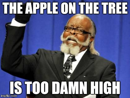Too Damn High Meme | THE APPLE ON THE TREE IS TOO DAMN HIGH | image tagged in memes,too damn high | made w/ Imgflip meme maker