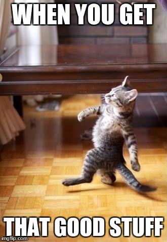 Cool Cat Stroll Meme | WHEN YOU GET THAT GOOD STUFF | image tagged in memes,cool cat stroll | made w/ Imgflip meme maker