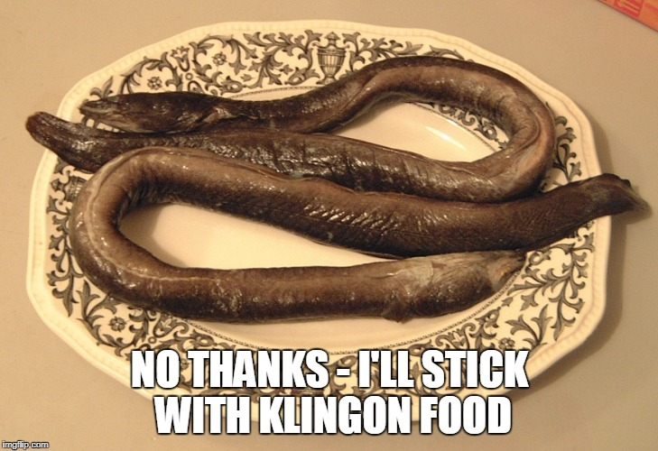 NO THANKS - I'LL STICK WITH KLINGON FOOD | made w/ Imgflip meme maker