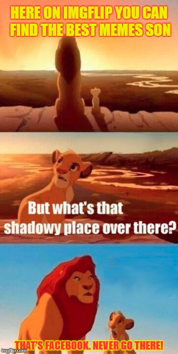 Simba Shadowy Place Meme | HERE ON IMGFLIP YOU CAN FIND THE BEST MEMES SON THAT'S FACEBOOK. NEVER GO THERE! | image tagged in memes,simba shadowy place | made w/ Imgflip meme maker