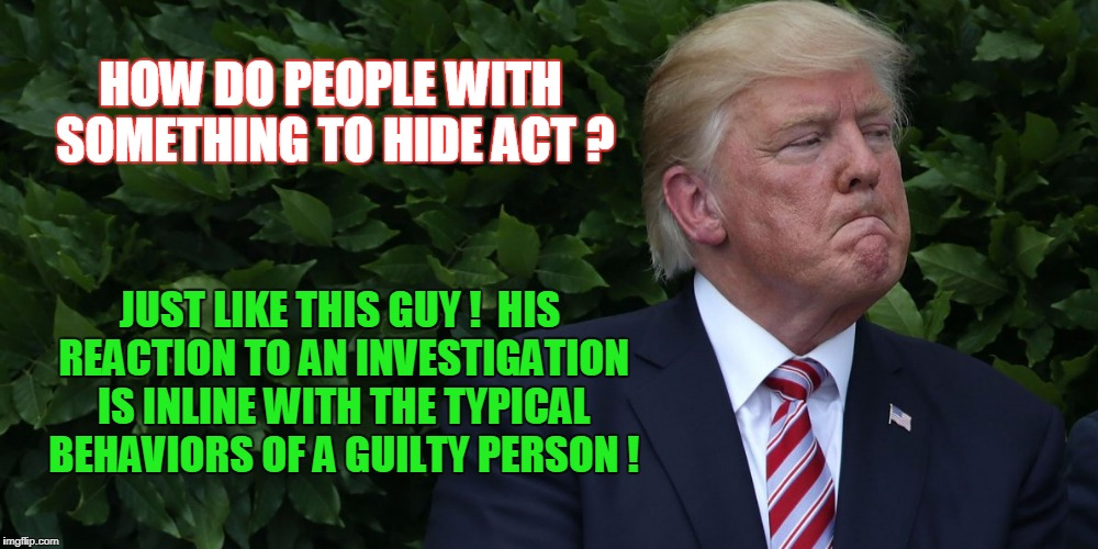 HOW DO PEOPLE WITH SOMETHING TO HIDE ACT ? JUST LIKE THIS GUY !  HIS REACTION TO AN INVESTIGATION IS INLINE WITH THE TYPICAL BEHAVIORS OF A  | image tagged in donald trump the clown | made w/ Imgflip meme maker