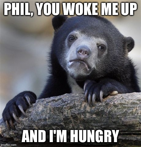 Confession Bear Meme | PHIL, YOU WOKE ME UP AND I'M HUNGRY | image tagged in memes,confession bear | made w/ Imgflip meme maker