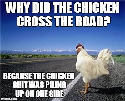 and it's hard to use a shovel with wings | WHY DID THE CHICKEN CROSS THE ROAD? BECAUSE THE CHICKEN SHIT WAS PILING UP ON ONE SIDE | image tagged in why did the chicken cross the road,memes,bad joke,chicken | made w/ Imgflip meme maker