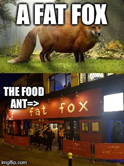 Look the food ant  | A FAT FOX THE FOOD ANT=> | image tagged in memes,fat,fox,foxy | made w/ Imgflip meme maker