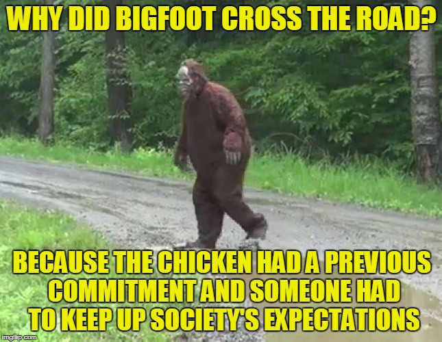 plus he has his own YouTube channel to fill | WHY DID BIGFOOT CROSS THE ROAD? BECAUSE THE CHICKEN HAD A PREVIOUS COMMITMENT AND SOMEONE HAD TO KEEP UP SOCIETY'S EXPECTATIONS | image tagged in why did bigfoot cross the road,memes,bigfoot,sasquatch,why did the chicken cross the road | made w/ Imgflip meme maker