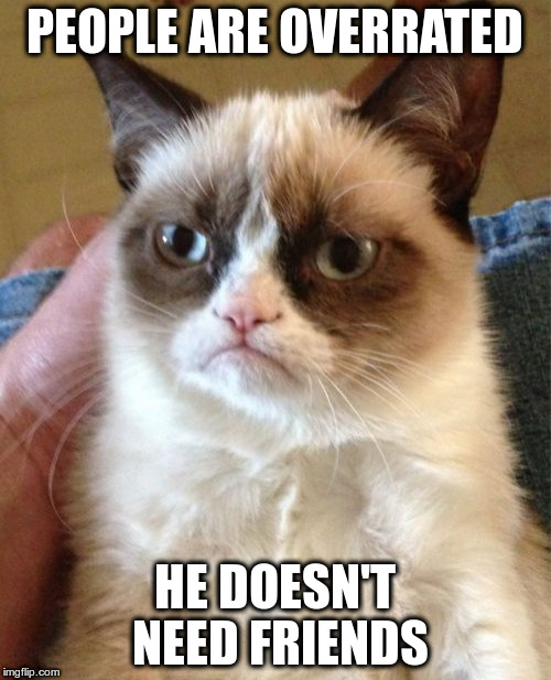 Grumpy Cat Meme | PEOPLE ARE OVERRATED HE DOESN'T NEED FRIENDS | image tagged in memes,grumpy cat | made w/ Imgflip meme maker